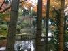 autumn-2015-yufuin-bamboo