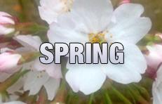 Spring walking tour